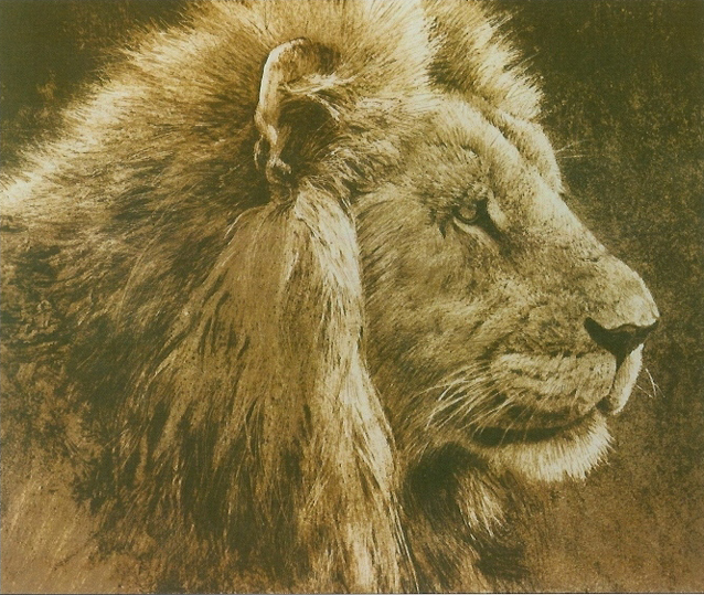 "Lion Head"" Original Lithograph by Robert Bateman"